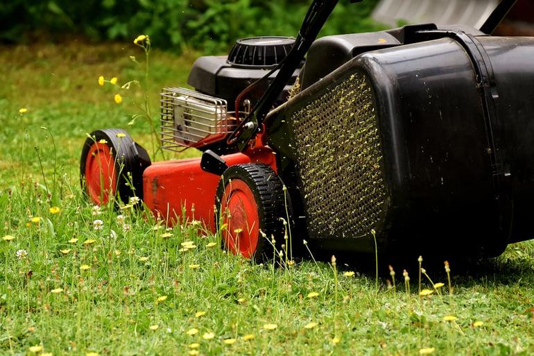 lawn mowing in spring.jpg