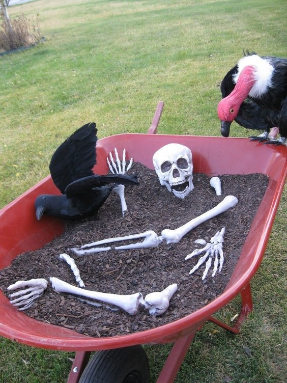 wheelbarrow of bones.jpg
